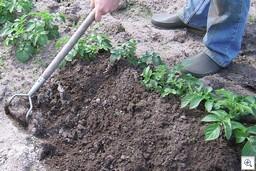 Aanaarden_met_hak aardappelen