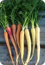 wortelen