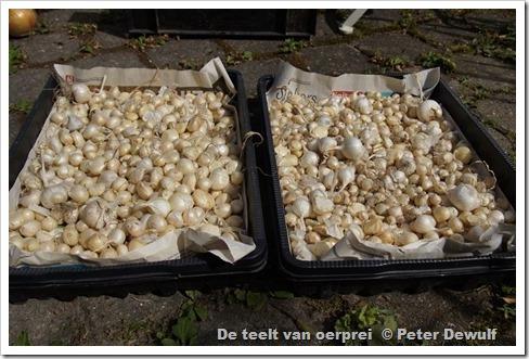 120ceen kistje reeds gesorteerd en een kistje niet gesorteerd
