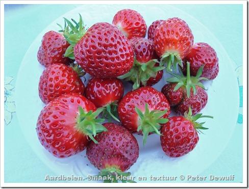 fraisier de yannick