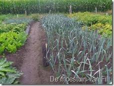 prei vooraan en links achter gez op 06-04-11 uitgeplant op17-06-11 rechts achter gez op15-02-11 en geplant op 18-05-11